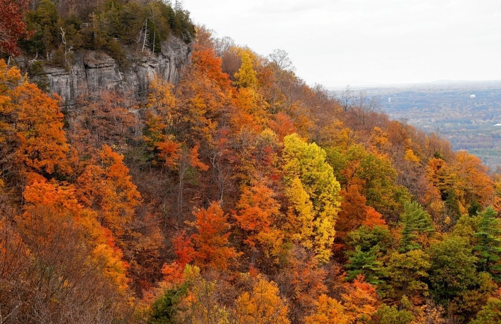 Fall Foliage Map Best Places To See Leaves Changing Color In - Us fall foliage map