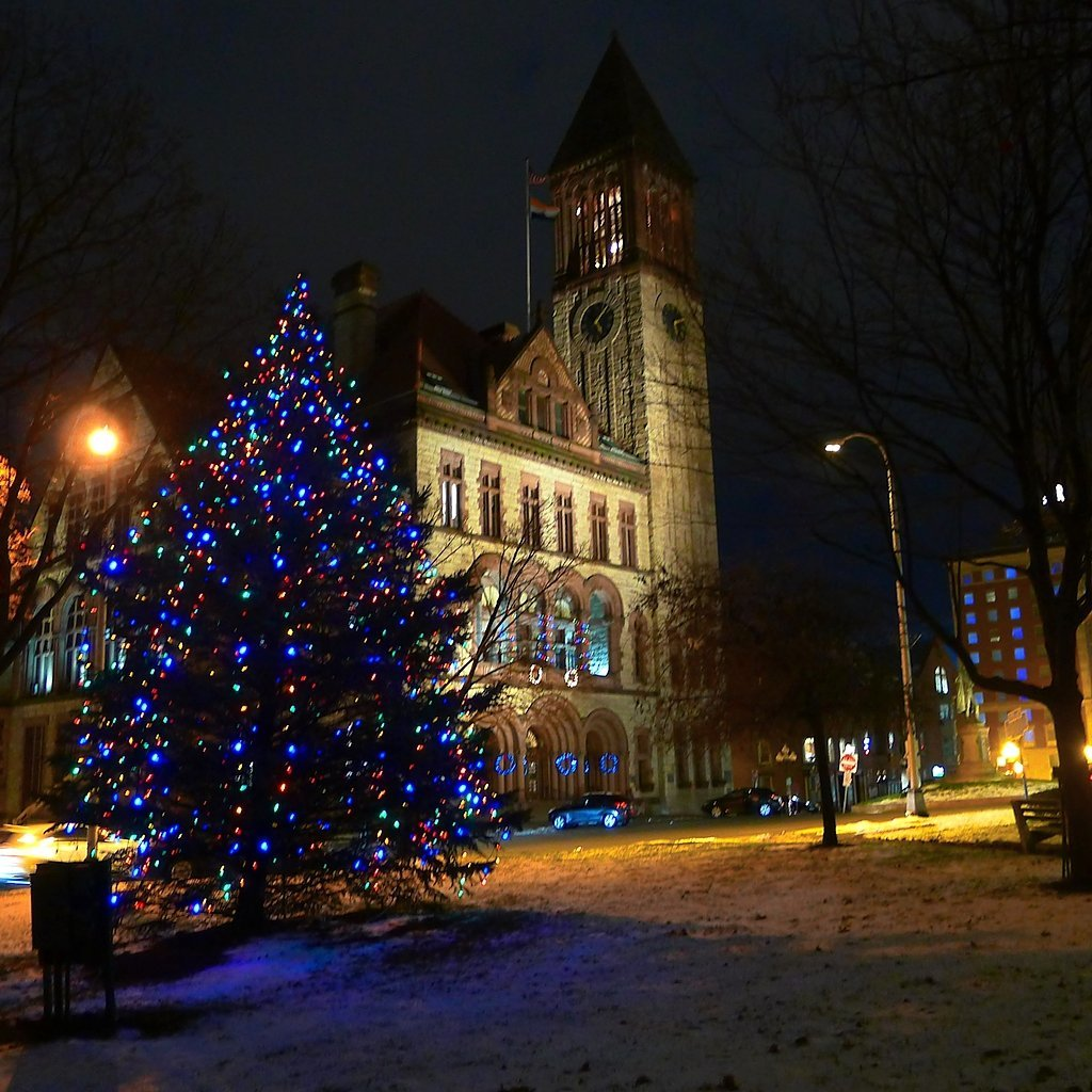 O Christmas Tree: See Photos Of City, Village, Town Trees