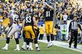 Pittsburgh Steelers Jesse James first TD catch